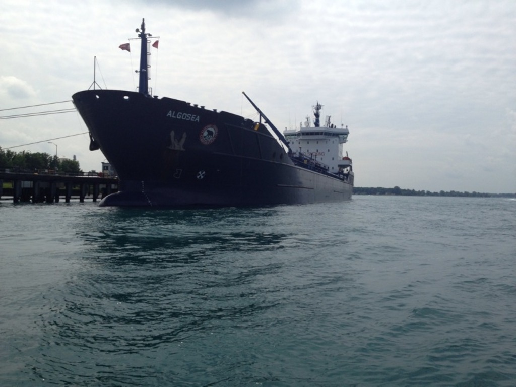 picture of great lakes ship: Algosea
